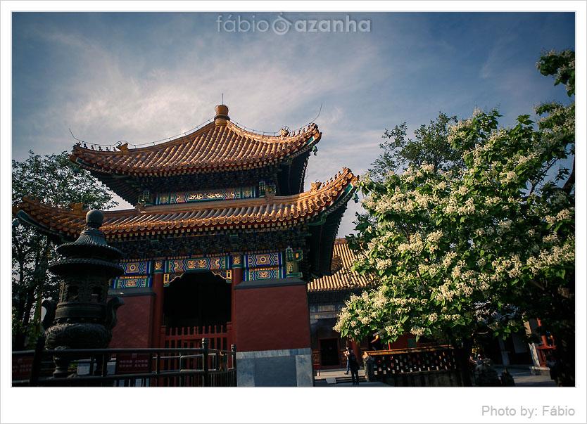 lama-temple-002